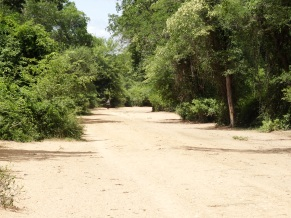 The road on the Zimbabwe side