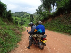 Road in Bwindi National Park, Uganda