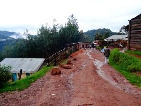 Ruhija, Uganda