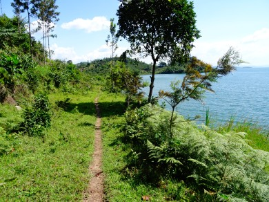 Single track on the Congo Nile Trail, Rwanda