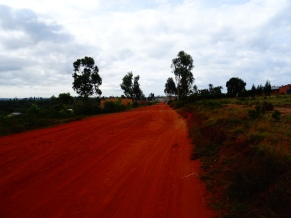 Dirtroad between Tanzanian and Burundian borders at Mapanda, Burundi