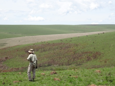 Nyika Plateau, Malawi