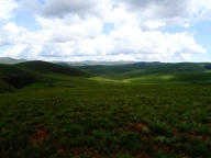 Beautiful Nyika Plateau, Malawi