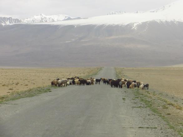 On our way out of Karakol, Tajikistan