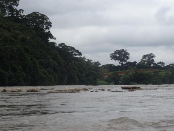 Small rapids after Bartola, Nicaragua