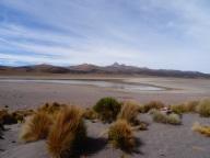 Laguna Huaynacota