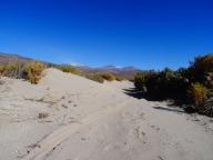 Sand dunes before Rio Lauca