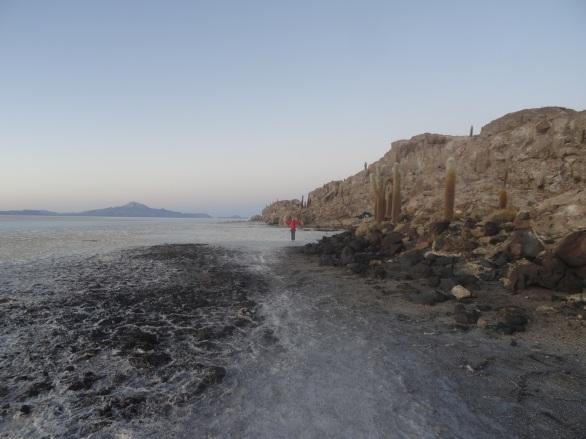 Isla de Incahuasi, Bolivia