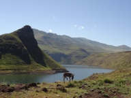 A donkey, a dam and a mountain, Lesotho