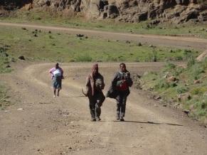 Basotho cattle boys, Lesotho